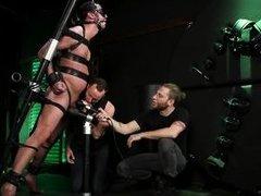 blindfolded sex slave with a pierced dick gets brutally tortured